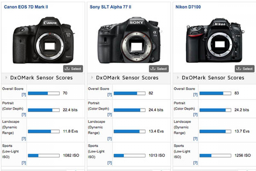 Matt Granger - Sony A77ii embarrasses the Canon 7D Mark II